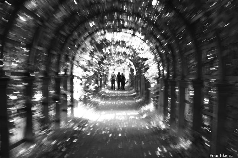 Черно белое фото - Симметричная композициия